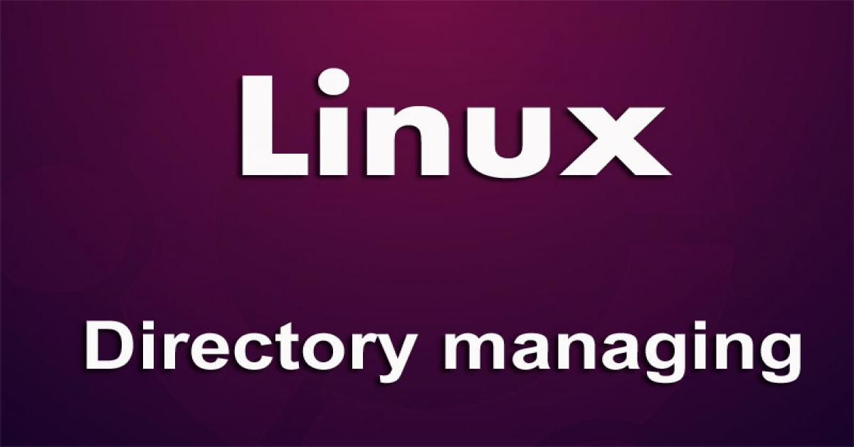 Linux directory managing